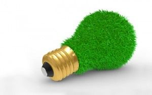 Paisajismo y Eficiencia Energética – Ahorra Energía con el Jardín