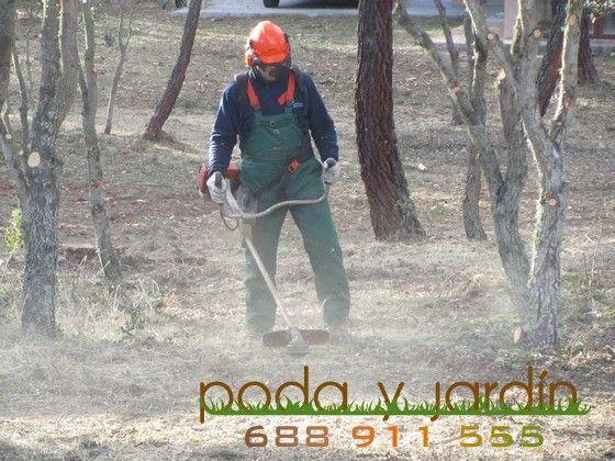 Empresa de Desbroces en Madrid Tlf 688 911 555 Limpieza de Parcelas