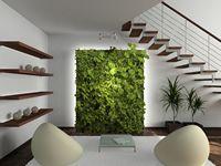 empresa de jardines verticales