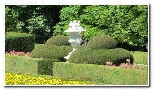 Jardinería, Podas y Mantenimiento de Jardines en Segovia
