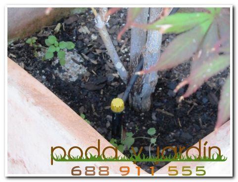 Instalaci n de riego autom tico en terrazas balcones y for Instalacion riego automatico jardin