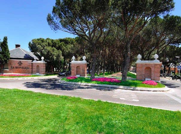Jardinería La Moraleja – Tlf 688 911 555