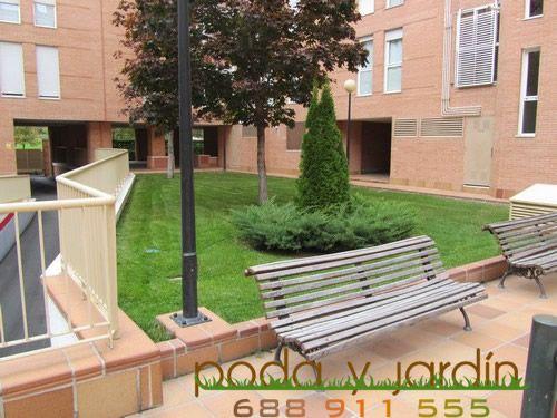 mantenimiento de jardines madrid 1
