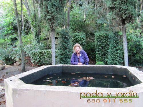 El Romeral de San Marcos en Segovia