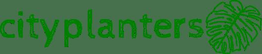 CityPLanters plantas de interior